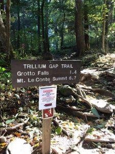 Grotto Fallsトレッキングコース