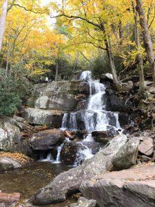 Laurel falls trailの滝